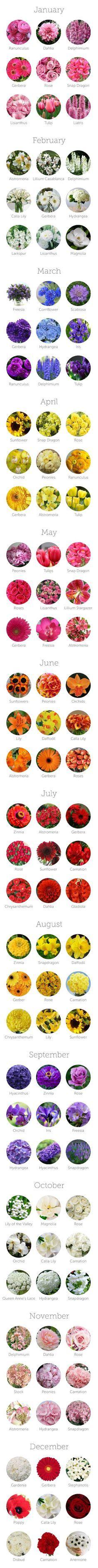Mira estas bellísimas #flores por temporada, con esta lista podrás darte una idea acerca de cuáles ir eligiendo. #Wedding #WeddingTips