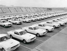 classic mustang factory lot photo