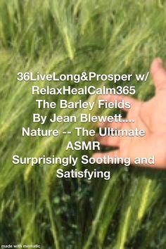 Asmr, Fields, Herbs, Nature, Naturaleza, Autonomous Sensory Meridian Response, Nature Illustration, The Great Outdoors, Mother Nature