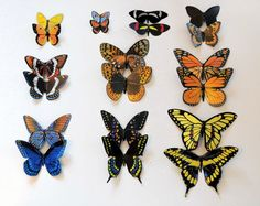 Butterfly Magnets Hand Painted Both Sides Insects Set of 10 Multi Color Refrigerator Magnets Home Decor Gifts by artist Doug Walpus by DougWalpusArtStudio on Etsy
