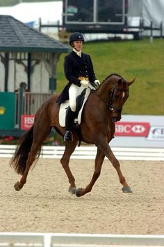 Gorgeous Arthur and Allison Springer competing at Rolex