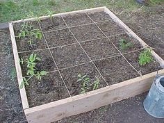 4x4 garden plans...