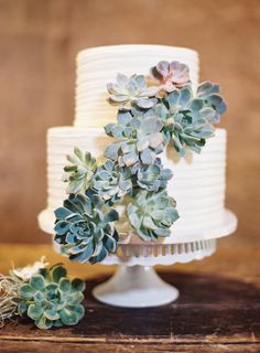 two tier bright white wedding cake with succulents weddings cakes weddingcakes weddingideas green greenwedding dpf Wedding Cake Two Tier, Wedding Cakes With Cupcakes, Wedding Cake Toppers, Succulent Wedding Cakes, Wedding Sweets, Beautiful Wedding Cakes, Perfect Wedding, Wedding Cake Designs, Wedding Ideas