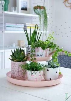 Haal de lente in huis met vrolijke kleurtjes en planten! Meer wooninspiratie voor de lente vind je op Woonblog.