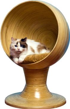 The Refined Feline Kitty Ball Bed in Bamboo, Modern Cat Furniture Pet Bed Urban Cat Boarding, Cat Furniture, Cardboard Furniture, Cool Pets, Pet Beds, Pet Accessories, Crazy Cats, Decoration, Cats And Kittens