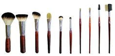Professional Italian Badger Makeup 10 Pc Brush Set Professional Cosmetic Brus