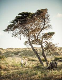 Beach Spring engagement shoot Ideas and Inspiration | Fotografias frescas de Sessão de noivado com - Foto de Sonho antes do casamento na praia Cascais Guincho