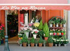 La Vie en Roses   Aix-en-Provence, France