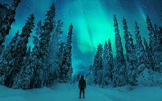 Il reste actuellement quelques chalets, chambres, appartements ou suites disponibles pour la Laponie Finlandaise pour un séjour en fin / début d'année 2016 / 2017. Réserver dès à présent