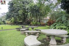 4-stars hotel with 41.000 sqm (10 acres) of sustainable tropical garden to explore in San José, Costa Rica. More than 1000 tropical plant species.