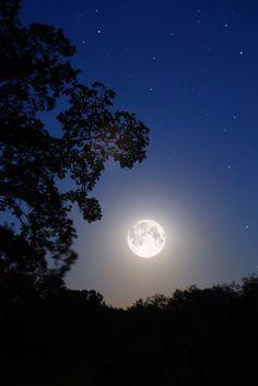 moonlight - Google zoeken