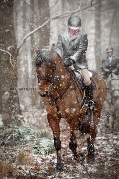 Horseback riding in the snowy weather. Horses In Snow, Show Horses, Beautiful Horses, Animals Beautiful, Pretty Horses, Winter Horse, Snowy Weather, Pony Horse, Fox Hunting