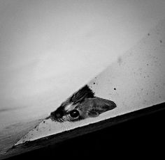 Beyour Artphotowork by B&W SOULVISION, via Flickr
