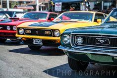 Liz Leggett Mustangs