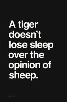 themodernexchange:  Tigers and Sheep | Shahir Zag