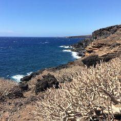 Aprovechando al máximo mis últimas horas en #Tenerife! Un paraíso natural sin duda. #MejorconGoldcar #tbmtenerife