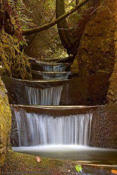 Cummins Creek, Oregon, USA  Photography - Lara Ellis