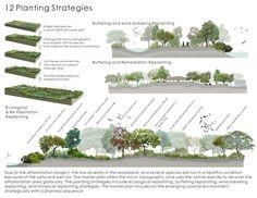12 ESTRATEGIAS DE SIEMBRA Y PLANTACIÓN http://www.asla.org/2011awards/images/largescale/217_12.jpg An Emerging Natural Paradise — Aogu Wetland Forest Park Master Plan http://www.asla.org/2011awards/217.html