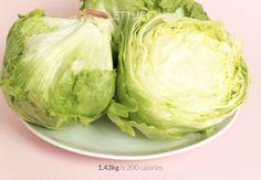 wie viele kalorien enthält den kopfsalat eisberg salat ein einhalb kilo ist nur 200 kalrien kalorienrechner kalorienzähler