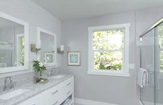 Essential gray for kitchen and dining room, maybe living room too and then the white for master bedroom.