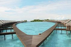 Ayada Maldives is a breathtaking modern resort and spa, with villas surrounded by shallow lagoon. Take a virtual tour with us to these islands of paradise. Amazing Swimming Pools, Swimming Pool Designs, Cool Pools, Epic Pools, Maldives Luxury Resorts, Hotels And Resorts, Maldives Accommodation, Maldives Beach, Beach Hotels