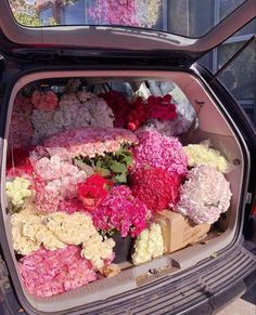 Spring Aesthetic, Flower Aesthetic, Aesthetic Makeup, Aesthetic Girl, My Flower, Beautiful Flowers, Foto Art, Pretty Pictures, Aesthetic Pictures