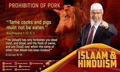 """""""Tame cocks and pigs must not be eaten."""" Baudhayana 1:12:5:3 """"He (Allaah) has only forbidden you dead meat, and blood, and the flesh of swine, and any (flood) over which the name of other than Allaah has been invoked."""" Al Qur'aan 16:115 In The Flesh, Names, Hinduism, Pigs, Blood, Meat, Pork, Little Pigs"""