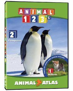 Animal Atlas: 123's DVD ~ Animal Atlas, http://www.amazon.ca/dp/B004OEX5CS/ref=cm_sw_r_pi_dp_OCSotb0QS5DC2