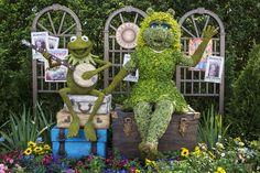 Muppets Celebrate Their New Film & Epcot International Flower & Garden Festival Topiary