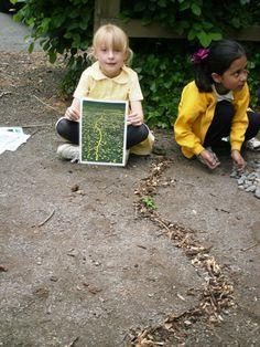 Andy Goldsworthy-inspired kids art