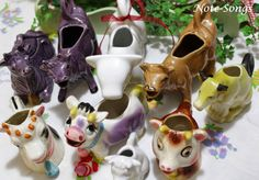 Cow Creamers, Note Songs