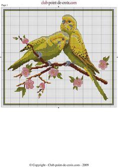 VVMXDy6K2Os.jpg 1,447×2,048 píxeles