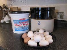 "Preserve eggs for up to 6 months without electricity via the time honored skill of ""Water Glassing."""