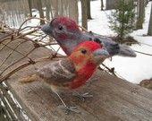 Mr. House Finch, needle felted bird fiber sculpture