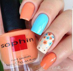 Orange flower light blue
