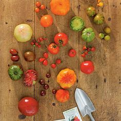 Grow an Assortment of Tomatoes | You can enjoy tomato varieties in a virtual crayon box of bold colors. Different hues offer distinctive flavors, so try the whole spectrum. | SouthernLiving.com