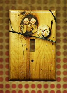 switchplate cover. for me, the owls are optional; i just love the natural wood grain look