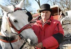 Most City Council members undecided about carriage horse ban: Daily News poll