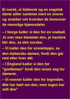 Ei norsk, ei italiensk og en engelsk dame .... | SKUFF.no - Vitser Og morsomme Bilder Dame, Funny Stuff, Lion, Funny Pictures, Humor, Lifestyle, Reading, Words, Nun