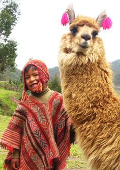 Farm Animals Are Friends NOT Food! A smiling lama... now your day is complete!