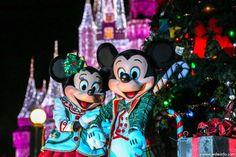 Saiba tudo sobre a festa de Natal do Magic Kingdom!