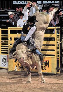 Tuff Hedeman | on Bodacious.