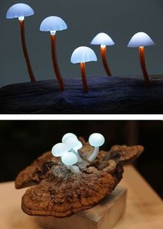 LED Mushroom Lights by Yukio Takano LED Mushroom Lights by Yukio Takano (Japan). Great idea, now where to purchase the lights in Aus? Mushroom Lights, Mushroom Art, Mushroom Crafts, Mushroom Decor, Blitz Design, Deco Nature, Cool Lamps, Diy Lamps, Table Lamps