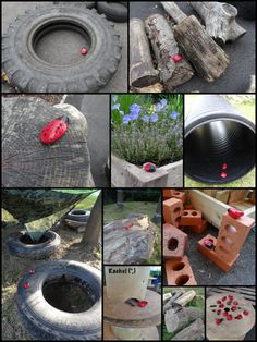 """Ladybird hunt in the garden - from Rachel ("""",)"""
