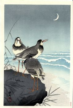 le vent qui passe les disperse les rassemble les pluviers  Chiyo-ni  (Illustration : Koson OHARA- Pluviers au bord de la mer et croissant de lune 1926)