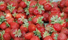 Fresh Ontario strawberries are taking centre stage in several of Toronto's best restaurants this month. The First Fruits of Spring festival is happ. Spring Festival, Strawberries, Ontario, Veggies, Fresh, Drinks, Creative, Garden, Vacation