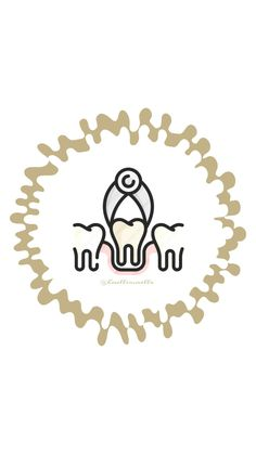 Dental Activities for Kids - Todo Sobre La Salud Bucal 2020 Dental Cover, Dentist Website, Dental Wallpaper, Happy Dental, Dental Pictures, Dentist Art, Dental Logo, Dental Braces, Instagram Highlight Icons