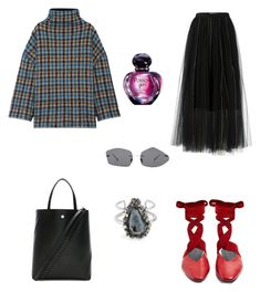 """Untitled #1092"" by elenek1 on Polyvore featuring STELLA McCARTNEY, Dorothee Schumacher, J.W. Anderson, Proenza Schouler, Alexander McQueen, Acne Studios and Christian Dior"