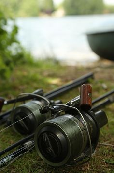 Carp Fishing Tips, Fish Home, Fishing Quotes, Fishing Reels, Hunting, Hobbies, Outdoors, Wallpaper, Photos