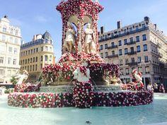 Le Festival Mondial des Roses, Fontaine des Jacobins (mai 2015)